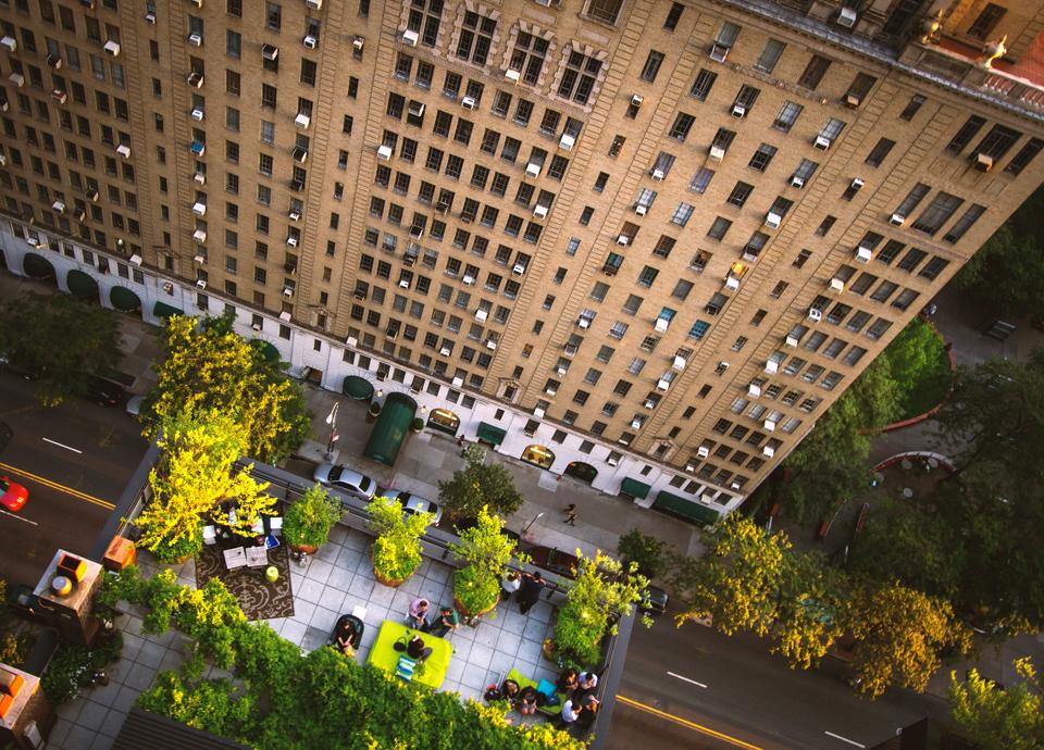 Urban Trees Density
